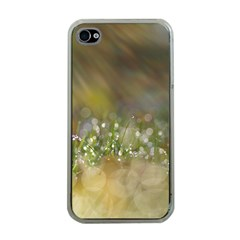 Sundrops Apple iPhone 4 Case (Clear)