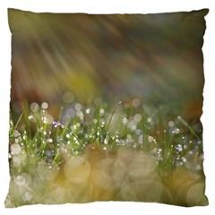 Sundrops Large Cushion Case (single Sided)