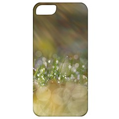 Sundrops Apple iPhone 5 Classic Hardshell Case