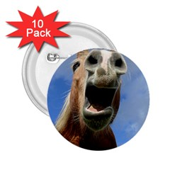 Haflinger  2 25  Button (10 Pack)