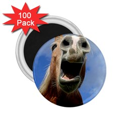Haflinger  2 25  Button Magnet (100 Pack)