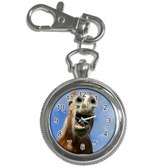 Haflinger  Key Chain & Watch