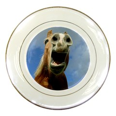 Haflinger  Porcelain Display Plate