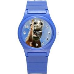 Haflinger  Plastic Sport Watch (small)