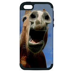 Haflinger  Apple iPhone 5 Hardshell Case (PC+Silicone)