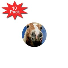 Haflinger  1  Mini Button Magnet (10 pack)