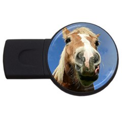 Haflinger  2GB USB Flash Drive (Round)