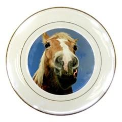 Haflinger  Porcelain Display Plate
