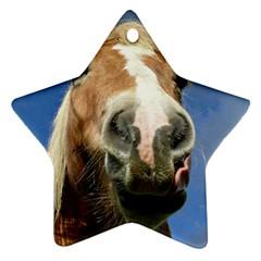 Haflinger  Star Ornament (Two Sides)
