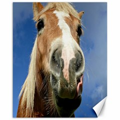 Haflinger  Canvas 16  x 20  (Unframed)