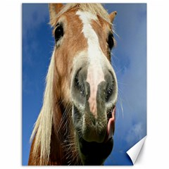 Haflinger  Canvas 18  X 24  (unframed)
