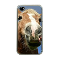 Haflinger  Apple iPhone 4 Case (Clear)