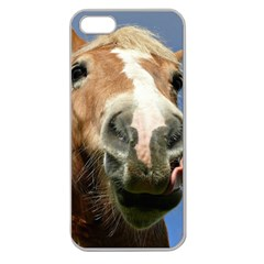 Haflinger  Apple Seamless iPhone 5 Case (Clear)