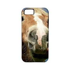 Haflinger  Apple iPhone 5 Classic Hardshell Case (PC+Silicone)