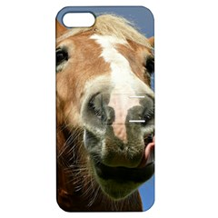 Haflinger  Apple iPhone 5 Hardshell Case with Stand