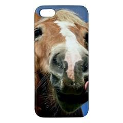 Haflinger  iPhone 5 Premium Hardshell Case