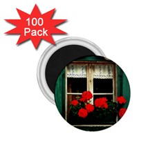 Window 1.75  Button Magnet (100 pack)