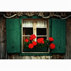 Window Canvas 12  x 18  (Unframed)