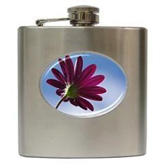 Daisy Hip Flask