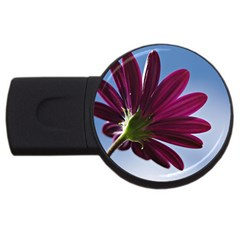 Daisy 2GB USB Flash Drive (Round)