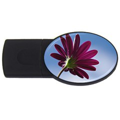 Daisy 2GB USB Flash Drive (Oval)