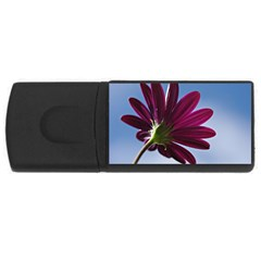 Daisy 4GB USB Flash Drive (Rectangle)