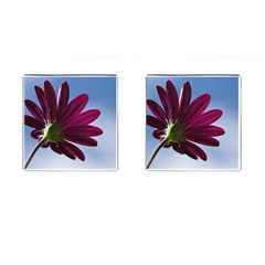 Daisy Cufflinks (Square)
