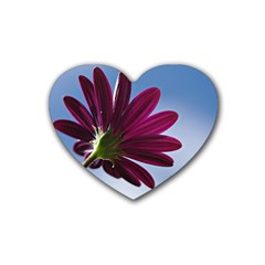 Daisy Drink Coasters 4 Pack (Heart)