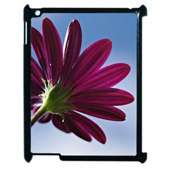 Daisy Apple Ipad 2 Case (black)