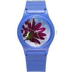 Daisy Plastic Sport Watch (Small)