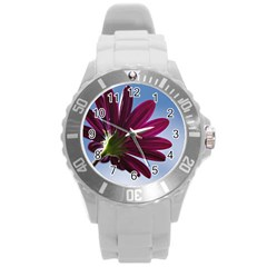 Daisy Plastic Sport Watch (large)