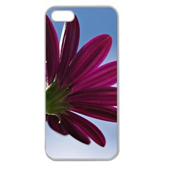 Daisy Apple Seamless Iphone 5 Case (clear)