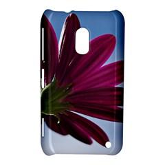 Daisy Nokia Lumia 620 Hardshell Case