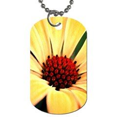 Osterspermum Dog Tag (two Sided)