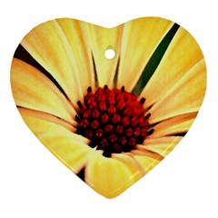 Osterspermum Heart Ornament (Two Sides)