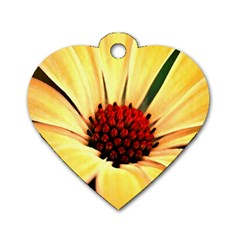 Osterspermum Dog Tag Heart (Two Sided)