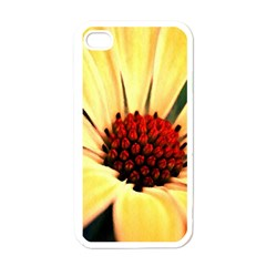 Osterspermum Apple Iphone 4 Case (white)