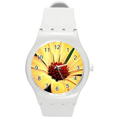 Osterspermum Plastic Sport Watch (medium)