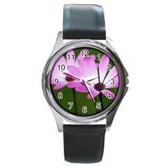 Osterspermum Round Metal Watch (Silver Rim)
