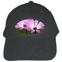 Osterspermum Black Baseball Cap