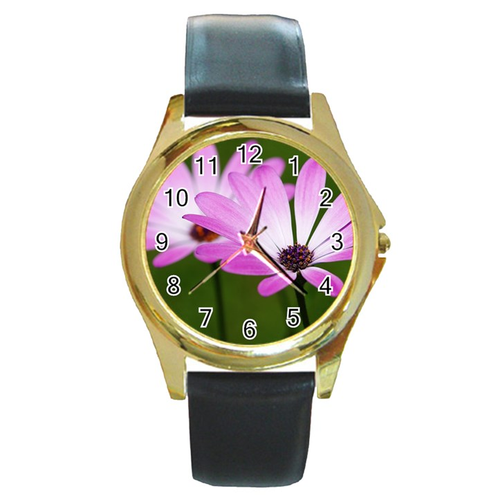 Osterspermum Round Metal Watch (Gold Rim)