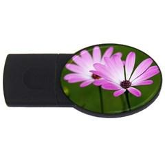 Osterspermum 2GB USB Flash Drive (Oval)