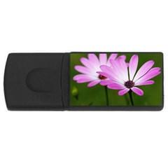 Osterspermum 2GB USB Flash Drive (Rectangle)