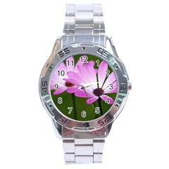 Osterspermum Stainless Steel Watch (Men s)