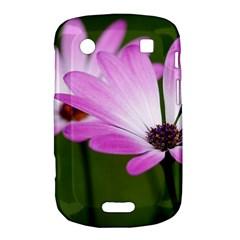Osterspermum BlackBerry Bold Touch 9900 9930 Hardshell Case