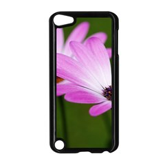 Osterspermum Apple iPod Touch 5 Case (Black)