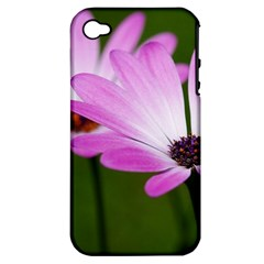 Osterspermum Apple iPhone 4/4S Hardshell Case (PC+Silicone)