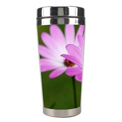Osterspermum Stainless Steel Travel Tumbler