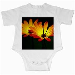 Osterspermum Infant Bodysuit