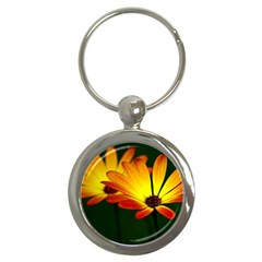 Osterspermum Key Chain (round)